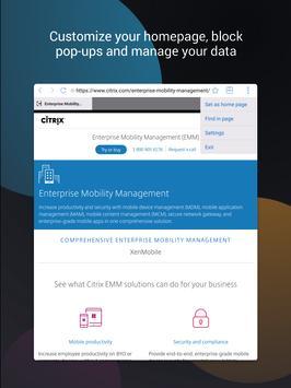 Citrix Secure Web imagem de tela 7