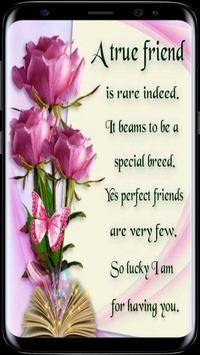 True Friendship Quotes poster