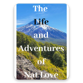 The Life And Adventures free eBooks icon