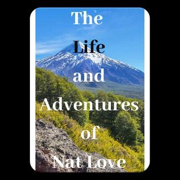 The Life And Adventures free eBooks poster