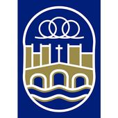 Encamiñadas icon