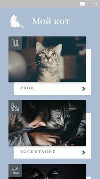 Забота о кошках poster