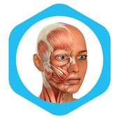 Medical ikona