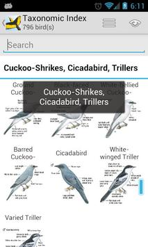 Morcombe's Birds of Australia screenshot 1
