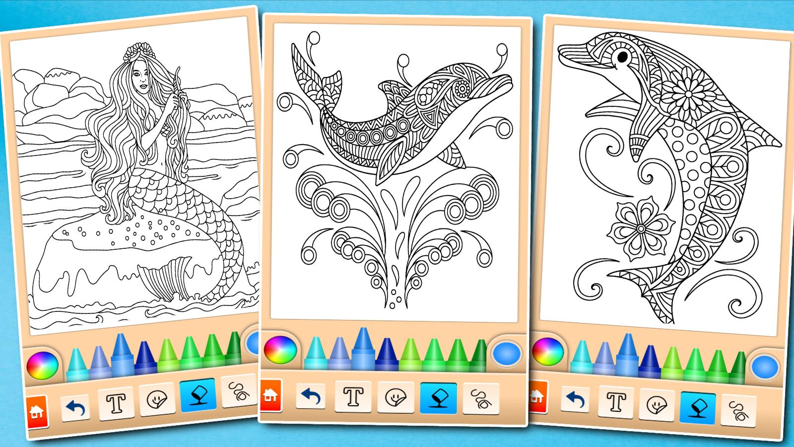 Dolphin and fish coloring book poster