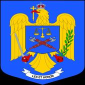 Infotrafic - Poliția Română icon