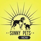 Sunny Pets Now icon