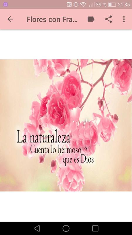 Flores Con Frases Cristianas For Android Apk Download