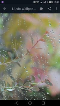 Frases de LLuvia - Sonidos de Lluvia y Truenos screenshot 19