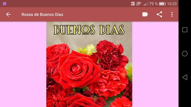 Rosas de Buenos Dias captura de pantalla 8