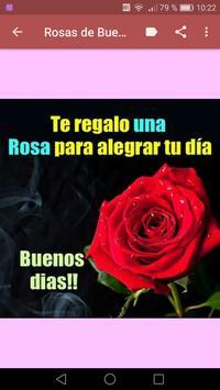 Rosas de Buenos Dias captura de pantalla 13