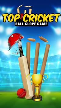 Top Cricket Ball Slope Game poster