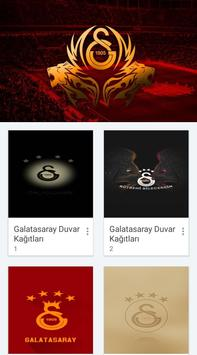 Galatasaray Wallpapers screenshot 1
