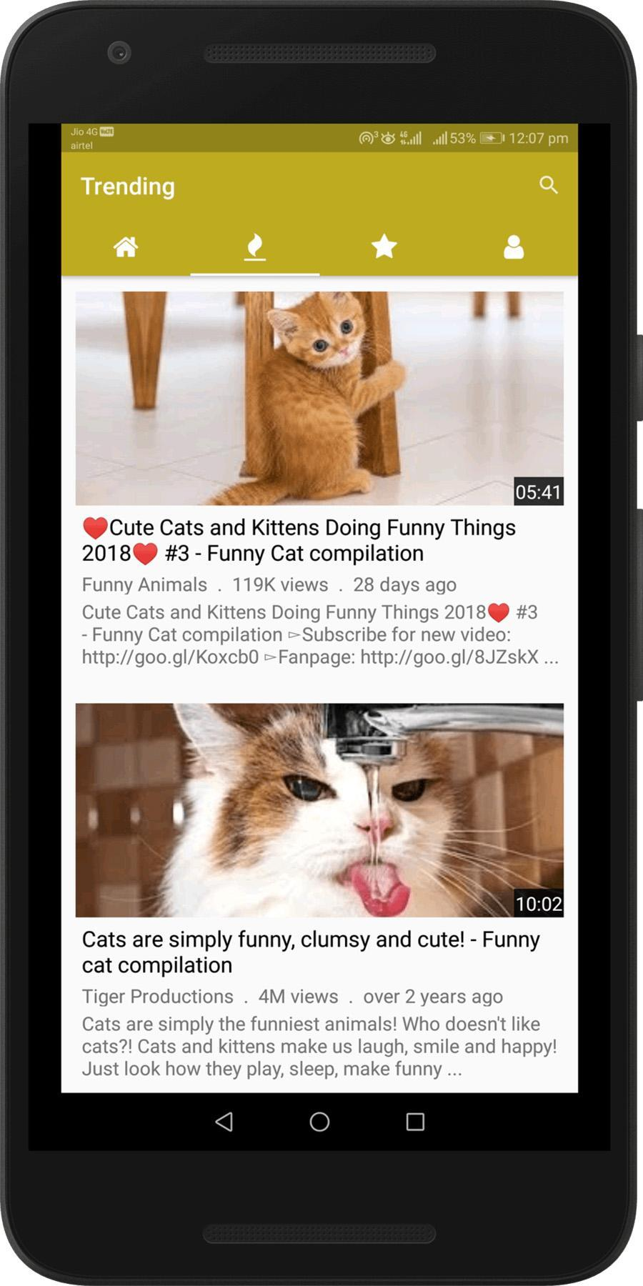 Funny Animal Videos Cats Dogs Clips Free For Android Apk Download