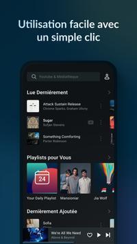 Lark Player capture d'écran 5