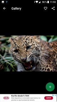 Jaguar Wallpapers HD screenshot 1