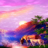 Thirsty Horses Live Wallpaper icon
