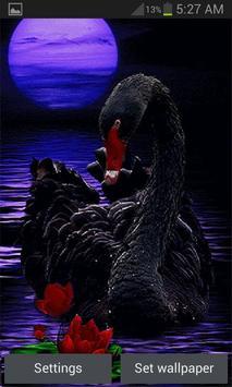 Black Swan Live Wallpaper poster