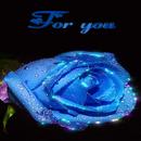 Blue Rose For You LWP APK