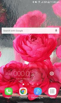 Rainy Pink Roses LWP screenshot 1