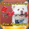Imagenes Bonitas con Mensajes simgesi