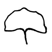 Manola Pirografia icon
