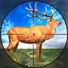 사슴 사냥 : 야생 사슴 사냥 아이콘
