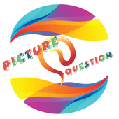 Picture And Question icon