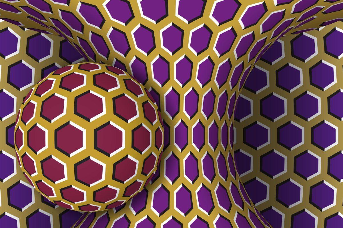 brain game illusions optical