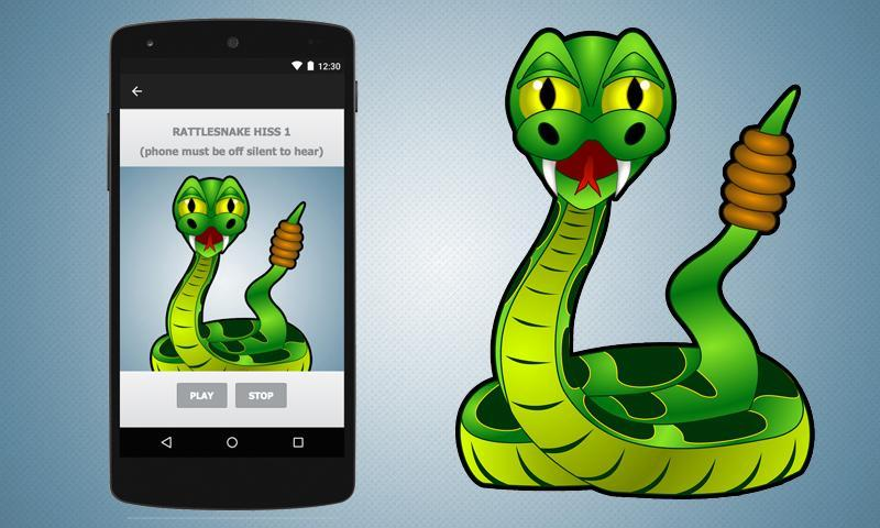 Rattlesnake Sound Effect Rattlesnake Sound Effects for Android - APK