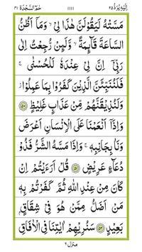 Quraan-E-Karim (11 Lines) screenshot 6