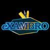 ikon Exambro