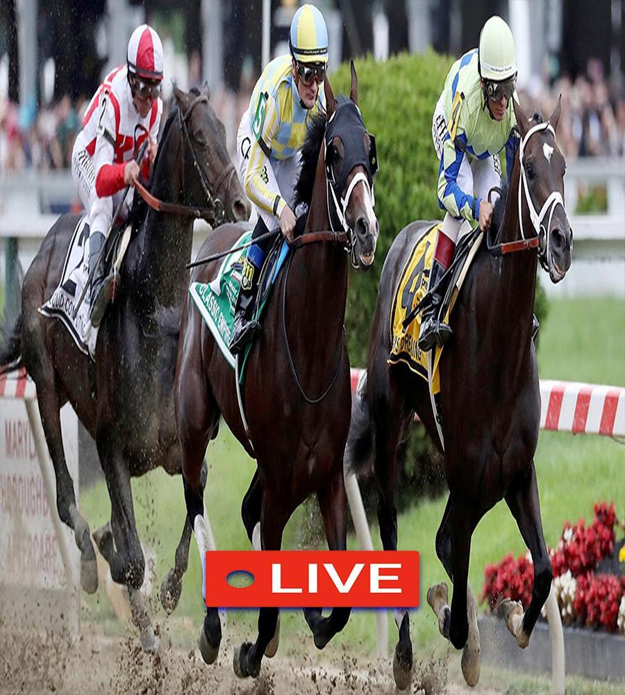 Stream Horse Racing