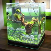 Unique aquarium design icon