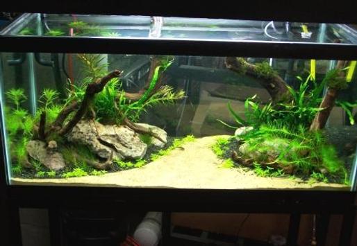 Unique aquarium design screenshot 4
