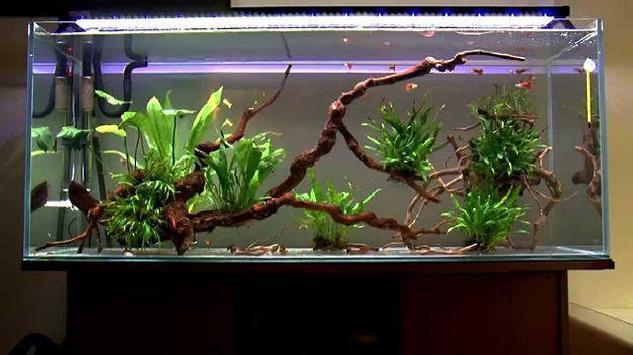 Unique aquarium design screenshot 6