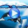 Whales Songs zu schlafen Zeichen