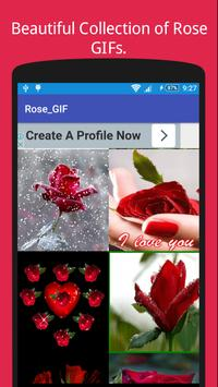 Rose GIF Collection For Rose Day 🌹 poster