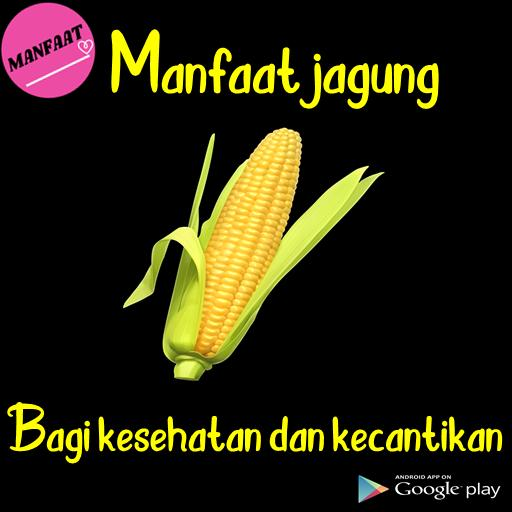 Manfaat Tanaman Jagung For Android Apk Download