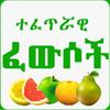 Islamic Ethiopian Traditional Medicine Amharic App biểu tượng