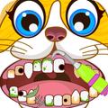 Animal Pets Dentist Office - Puppy Kitty Pet Play