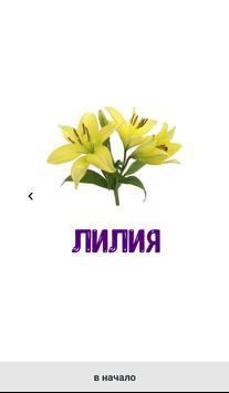 Цветы. Развивающие карточки screenshot 2