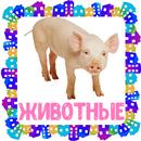 Животные. Карточки для детей APK