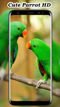 Cute Parrot Wallpaper screenshot 1