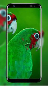 HD New Green Wallpaper screenshot 8