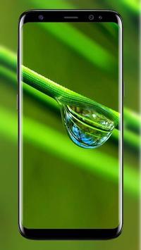HD New Green Wallpaper screenshot 20