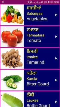 Learn Punjabi From English poster