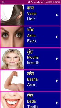 Learn Punjabi From English screenshot 5