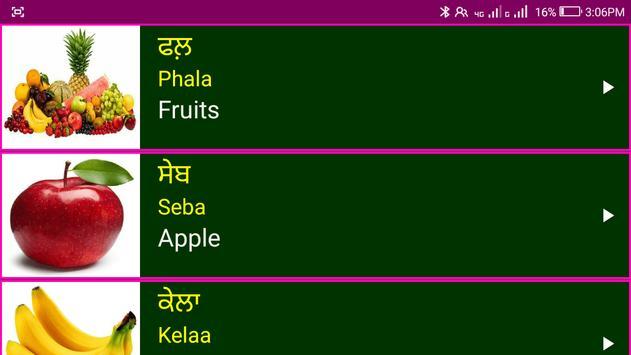 Learn Punjabi From English screenshot 8