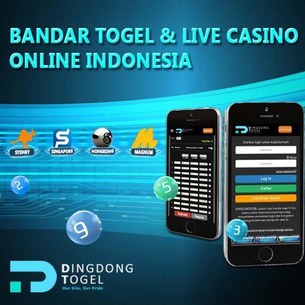 Dingdongtogel For Android Apk Download